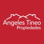 Angeles Tineo Propiedades